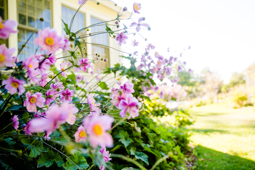 How to sell your home this spring